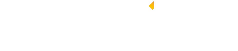 LEMOINE-Disaster-Services-Logo-white-WEB